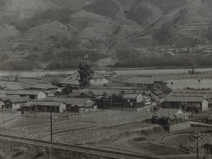 前畑秀子の画像 p1_9
